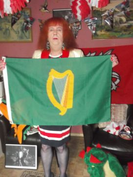 and this is dublins flag in the republic of ireland